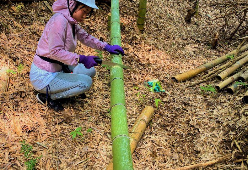 竹を切るワークショップ